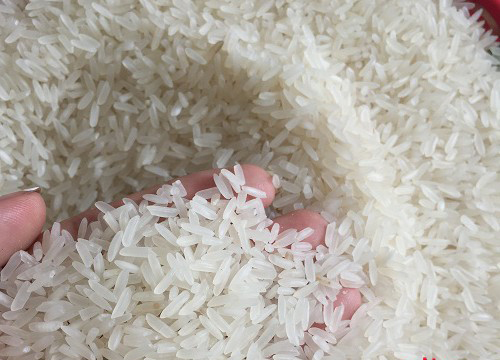 Vietnam Fragrant rice DT8